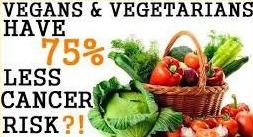 veg 8 cancer