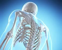 Bones need vitamin D