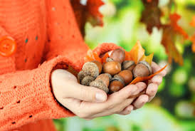 Weird Superstitions: Carry Acorn to Stay Young!